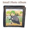 hatching-small-photo
