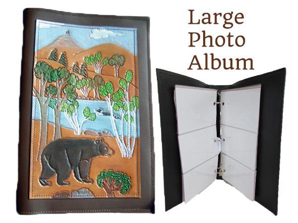 large-loon-photo