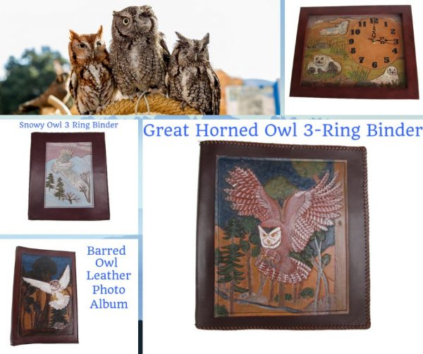 owl-products